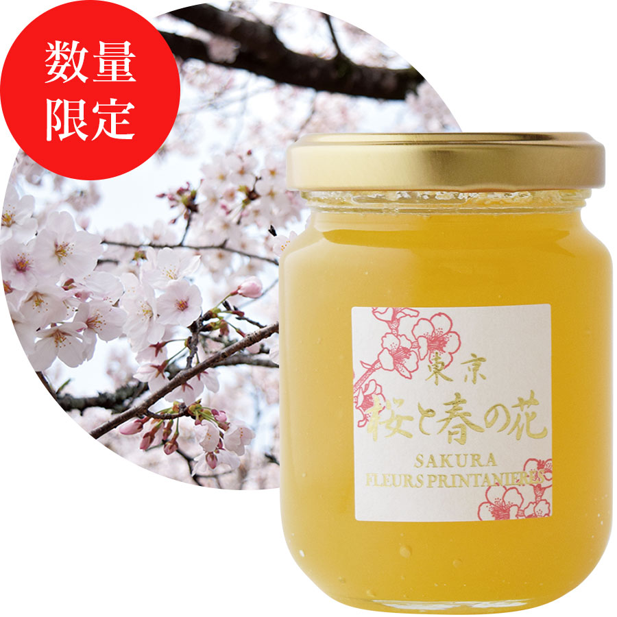 東京 桜と春の花