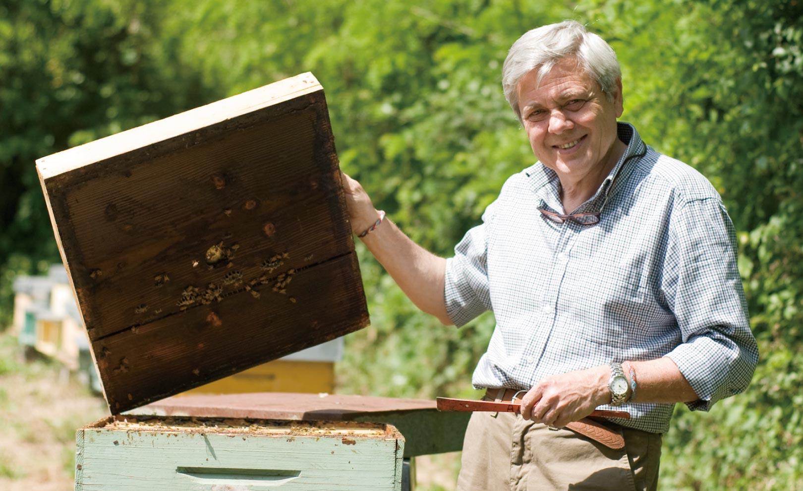 養蜂家:カルミネ・アルヴィノ氏 イメージ