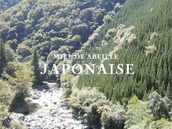日本みつばち
